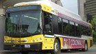 Texas Agency Is Committed to CNG Buses