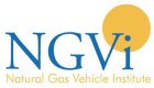 NGVi Offers E-Learning